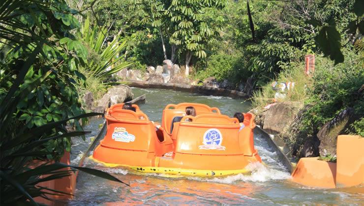 Beto Carrero World:10 atrações radicais do parque