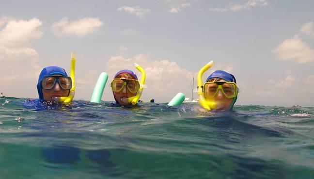 Saiba quais são as melhores opções de mergulho em Bombinhas