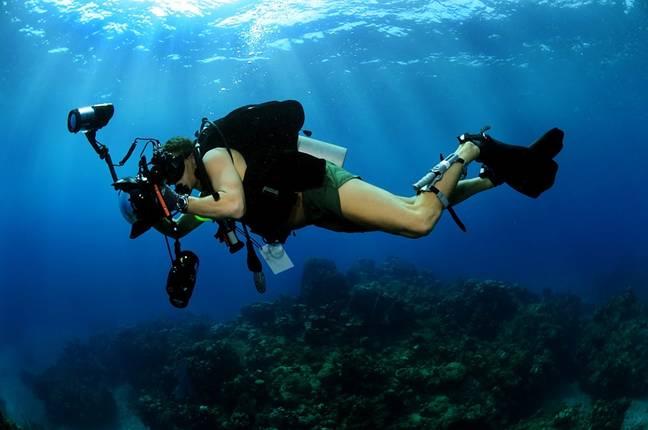 Cursos de mergulho em Bombinhas incluem experiências práticas em alto mar. Fonte: Pixabay.